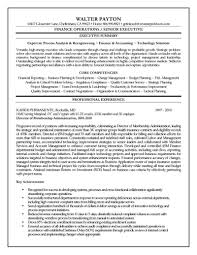 Examples Of Summaries On Resumes by Executive Resume