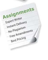Custom assignment writing service   Can You Write My Term Paper     Writer Support UK