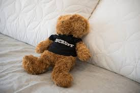 The teddy bear of Johnny Skandros  founder of gay dating app Scruff  is seen at his home in Las Vegas on Tuesday  Oct            Martin S  Fuentes Las Vegas