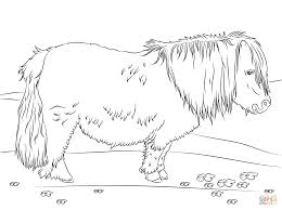 beautiful baby horse coloring pages print ideas printable