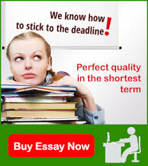 Best Custom Essay Writing Service in US   Irish Essays So  all you need to hire the best writing agency present globally is to just place your order and then let us weave our magic