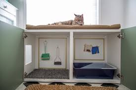 Building Kitchen Cabinet Boxes How To Conceal A Kitty Litter Box Inside A Cabinet How Tos Diy