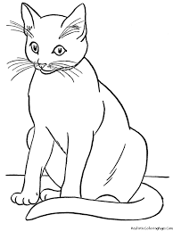 play with fish realistic cat coloring pages 30963