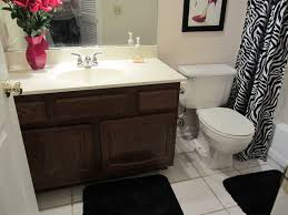 Bath And Shower In Small Bathroom Small Bathroom Remodel On A Budget U2013 Future Expat