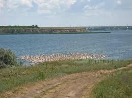 Berezan Estuary