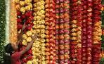 Sweets, Lights and Crackers – It's Diwali in India (