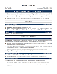 Professional Profile On Resume How To List Degree On Resume Resume For Your Job Application