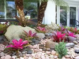 garden florida gardening ideas inspiring garden and landscape