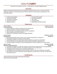 Resume For Nanny Job by Security Officer Resume Sample Experience Resumes