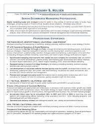 Marketing Director Resume Examples     marketing resume samples     happytom co