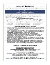 Professional Resume Samples by Julie Walraven  CMRW   vp resume