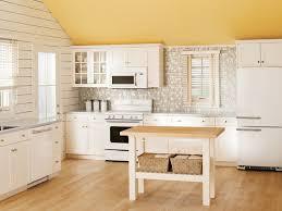 Mini Kitchen Cabinet Kitchen Faucet Enchanting Kitchen Remodel Designs Over The