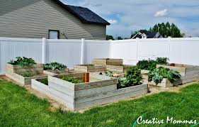 best wood to use for raised vegetable garden home decorating