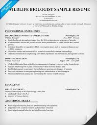 Sample Staff Accountant Resume by Wildlife Biologist Resume Sample Http Resumecompanion Com