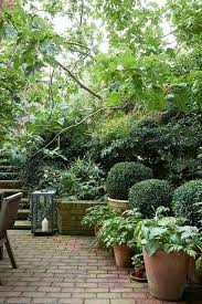 love this patio courtyard pinterest patios gardens and