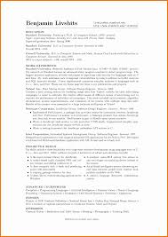Resume Profile Section Examples by Example Of Cv Profile Summary