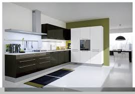 Modern European Kitchen Cabinets Kitchen Indian Kitchen Design Modern Rta Cabinets Reviews