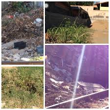 Leitora reclama de lixo despejado em rua de Cariacica |