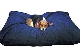 amazon com dogbed4less jumbo extra large memory foam dog bed