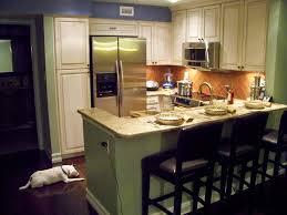 Condo Kitchen Remodel Ideas 100 Condo Bathroom Remodel Ideas Bathroom Apartment Ideas Shower