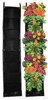 Vertical Garden Vegetables by Amazon Com 8 Pocket Vertical Garden Planter Living Wall