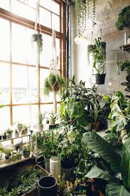 632 best living green green green images on pinterest plants