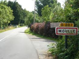 Moulle