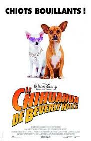 Le Chihuahua de Beverly Hills 1 poster