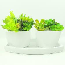 Succulents Pots For Sale by List Manufacturers Of Succulent Pots Buy Succulent Pots Get