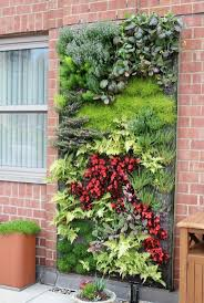 Vertical Garden Vegetables by 126 Best Vertical Gardening Images On Pinterest Vertical Gardens