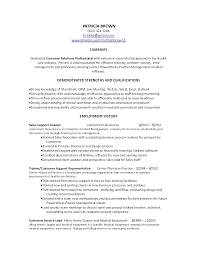 Resume Summary Examples Customer Service by Professional Summary Examples For Resume For Customer Service