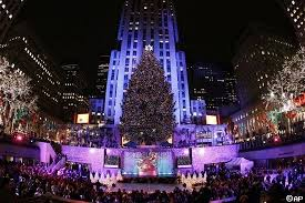 Largest tree for a Rock Center