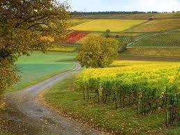 عکس طبیعت روستایی