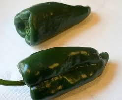 Pablano Pepper