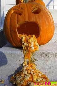 http://t1.gstatic.com/images?q=tbn:GQXxt-BsV8JeHM:http://www.icomplainthereforeiam.com/wp-content/uploads/2010/01/funny-pictures-sick-pumpkin-0t6.jpg