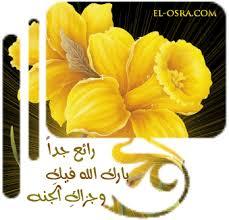 كتب طبخ جزائري للتحميل Flower030copycopy