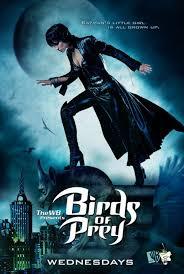 Birds of Prey 1ª Temporada Rmvb Legendado
