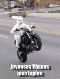 jOYEUSES PAQUES Normal_lapinmoto