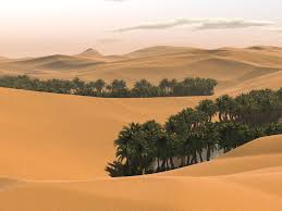 Nature Wallpaper - Desert