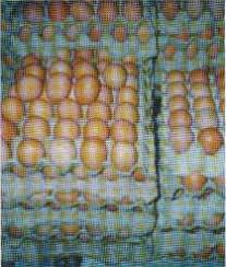 http://t1.gstatic.com/images?q=tbn:ZIX1w8g5JnV-CM:http://nita.goblogmedia.com/images/telur