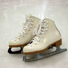 external image ice_skating_250x251.jpg