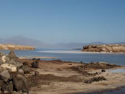 http://t1.gstatic.com/images?q=tbn:gFexBNAYUieybM:http://de.academic.ru/pictures/dewiki/76/Lake_Assal_1-Djibouti.jpg