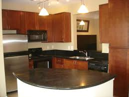 Large Modern Kitchen With Tract Lights Cabinet Space New Appliances