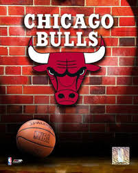 Chicago Bulls Basketball Team