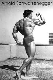 Arnold Bodybuilding Tips by Arnold