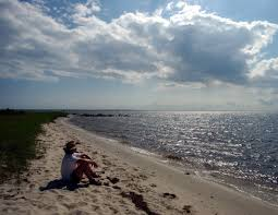 Ocracoke Island, N.C.