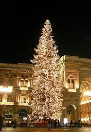 """250px Albero di Natale Milano dicembre 2008 Roma, dalla Valle di Fiemme un abete di 21 metri, per un buon Natale alla """"Capitale""""."""