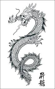 Tattoo Flash Dragon And Skull