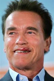 Arnold Schwarzenegger Hot