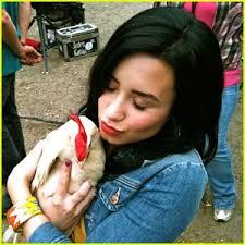 موسوعه صور ديمي للمسن Demi-lovato-chicken